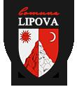 Primăria comunei Lipova - Bacău